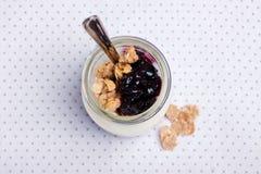 Jogurt z granola Zdjęcia Stock