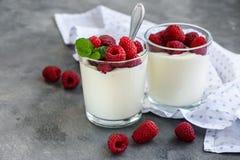 Jogurt z Malinkami obraz stock