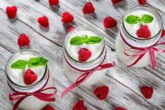 Jogurt z malinkami i mennicą, selekcyjna ostrość Obraz Stock
