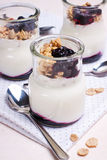 Jogurt z muesli Obraz Stock