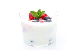 Jogurt z różnymi świeżymi jagodami i mennicą w szklanej zlewce Obraz Royalty Free