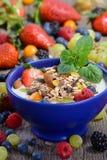 jogurt zdrowy Obrazy Royalty Free