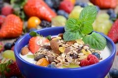 jogurt zdrowy Zdjęcie Stock