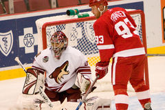 Johan Franzen And Curtis Joseph Foto de Stock Royalty Free