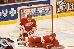 Johan Franzen Pomaga Out Chris Osgood Obraz Stock