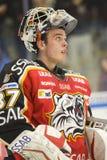 Johan Gustafsson - Ice Hockey Goalie royalty free stock images