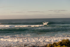 Johanna Beach Surf Swell Royaltyfria Bilder