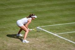 Johanna Konta at Wimbledon royalty free stock photos