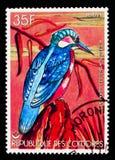 Johannae dei vintsioides del Alcedo del martin pescatore del Madagascar, serie degli uccelli, circa 1978 Fotografia Stock