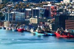 Johannes? Stadtzentrum und Hafen s Neufundland stockbild