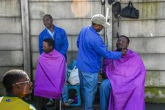street side barber cutting and trimming royalty free stock photo