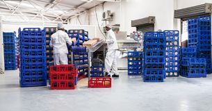 Racks of bread in bakehouse. stock photos