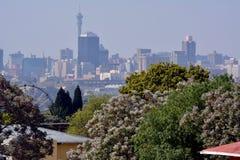Johannesburg un giorno di primavera Fotografia Stock Libera da Diritti