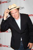 John C Reilly Immagine Stock