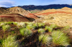John Day Fossil Beds National Monument Royalty Free Stock Images
