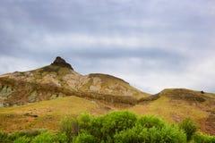 John Day Fossil Beds Sheep vaggar enhetslandskap Royaltyfri Fotografi