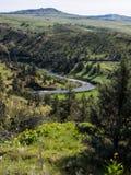 John Day River med vårblommor Royaltyfri Foto