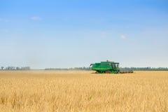 John Deere Combine Harvester Harvesting vete i fältet royaltyfria bilder