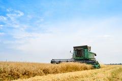 John Deere Combine Harvester Harvesting vete i fältet royaltyfria foton
