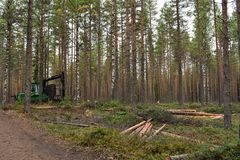 John Deere`s logging truck. Was displayed in the forest with some logs during the FinnMetko exhibit in Jämsänkoski, Finland royalty free stock images