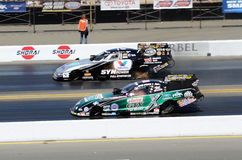 John Force vs Jack Beckman Arkivfoton