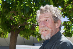 John Hurt Royalty Free Stock Photo