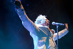 John Lydon Royalty Free Stock Photography