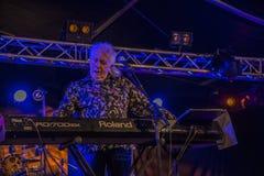 John Mayall-het spelen toetsenbord Royalty-vrije Stock Afbeelding