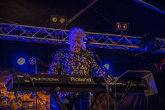 John Mayall jouant le clavier Photo stock