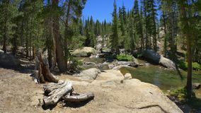John Muir Trail Waterfall. Steadicam move along John Muir Trail across river stock video