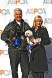 John O'Hurly for ASPCA Stock Images