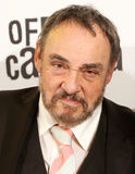 John Rhys-Davies. CRACOW, POLAND - APRIL, 17, 2013: John Rhys-Davies during 6 Editions of the International Festival of the Independent Cinema Off the Plus Stock Images