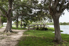 John S. Taylor Park,  Pinellas County, Florida, USA. Wooden bridge to a small islet in John S. Taylor Park, Pinellas County, Florida, USA Royalty Free Stock Images