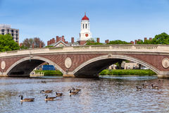 John W. Weeks Bridge and clock tower over Charles River in Harva Royalty Free Stock Photography