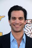 Johnathon Schaech Royalty Free Stock Image