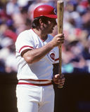 Johnny Bench. Cincinnati Reds star catcher Johnny Bench.  (Image taken from color slide Stock Photos