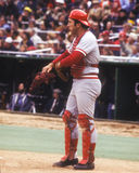 Johnny Bench Royalty Free Stock Image