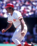 Johnny Bench Stock Images