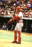 Johnny Bench Cincinnati Reds. Johnny Bench Hall of Fame Catcher for the Cincinnati Reds during a regular season game being play in 1976 at Philadelphia Veterans stock photography