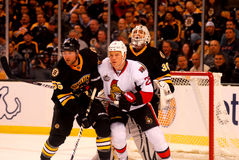 Johnny Boychuk v. Chris Neil NHL Royalty Free Stock Image