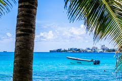 JOHNNY CAY, COLOMBIA - OCTOBER 21, 2017: Palm trees in Johnny Cay, Island of San Andres, Colombia in a beautiful beach. Background with a boat in the blue water Stock Images