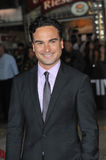 Johnny Galecki Royalty Free Stock Image
