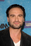 Johnny Galecki Royalty Free Stock Photo