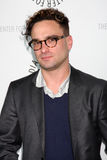 Johnny Galecki,Big Bang Stock Photos