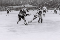 Johnny McKenzie, Boston Bruins Stockfoto