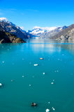 Johns Hopkins Glacier. John Hopkins Glacier at Glacier Bay National Park with turquoise water and floating ice chunks in front of it Royalty Free Stock Image