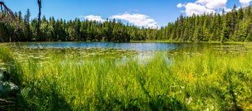 Johns jezioro Oferuje Panoramicznego widok Zdjęcie Royalty Free