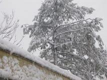 Johnson City - зима парка трейлера Стоковые Изображения