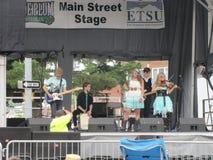 Johnson City - blåa Plum Festival - musikalisk kapacitet arkivfoto