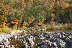 Johnsons Stänga-ins delstatspark, Reynolds County, Missouri Arkivfoton